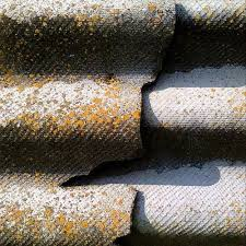 Asbestos Inspections of roof tiles